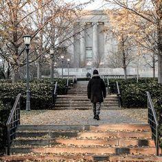 a new photo taken by _faizyy!  #fall #leaves #photography #canon #dslr #sigma #kansascity #williamrockhillgalleryofart #williamrockhillnelsongalleryofart http://ift.tt/1OjogaD - http://ift.tt/1HQJd81