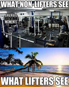 Heavy weight lifting session for back. 20 sets outlined with example weights which will give your back a high intensity workout. Workout Memes, Gym Memes, Gym Workouts, Gym Humour, Exercise Humor, Funny Humor, Funny Gym, Funny Work, Hilarious