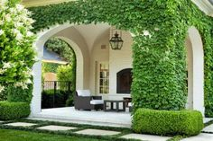 boxwood lining the back porch would be a great idea. Along with white curtains against the wood. Chandelier, vines,…