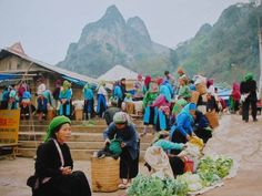 Ethnic Voyages offers Top Vietnam tours, Vietnam, Cambodia laos tour. ... Vietnam Mosaic of different ethnic groups, colorful markets, traditional villages, temples ... Vietnam Tours, Vietnam Travel, Vietnam Holidays, Vietnam Voyage, Tour Operator, The Province, Travel Around, Laos, Dolores Park