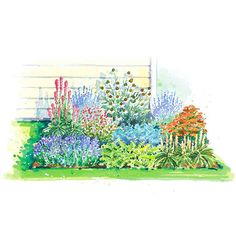 Sensational Summer Garden Plan - My plants arrived for me to start this one in front of the house.