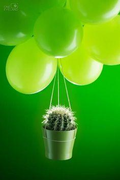 Green | Grün | Verde | Grøn | Groen | 緑 | Emerald | Colour | Texture | Style | Form | Pattern happy birthday old prick