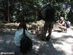 Claudia Komesu, Luccas Longo, Rodrigo Popiel e eu passarinhando no PET - Parque Ecológico do Tietê. Durante a Passarinhada, fomos abordados por vários Quatis que pareciam querer nossas barrinhas de cereal! Fotos de Janeiro/14.