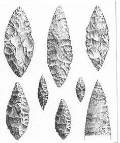 Examples of Solutrean laurel leaf points. The edges are finely dressed with pressure flaking, a method of using antler, wood, and bone tools to snap off tiny bits of stone, creating characteristically regular and smooth shapes. Very different from earlier Aurignacian points, which tend to be quickly knapped. From our historical perspective, fine Solutrean points indicate more advanced culture. Not so. Aurignacian artists were responsible for Chauvet cave.