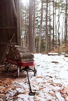 have a wagon on hand for gardening, syacking wood hauling game and or firewood--- and giving smaller kids a way to help with bigger jobs---keeping them entertained as well :)