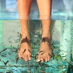 This seems a little extreme, but people do try it out! Would you? #footcare #skincare