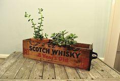 beautiful scotch whisky box