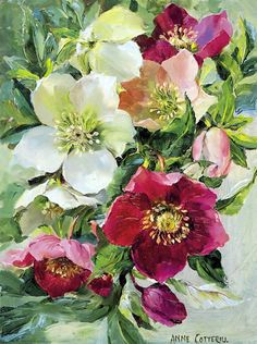 Midwinter Bouquet - Blank Card | Mill House Fine Art – Publishers of Anne Cotterill Flower Art