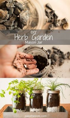 Grow your own herb garden using recycled canning jars. Savor fresh herbs from your windowsill to table! Perfect indoor or small space gardening project.: