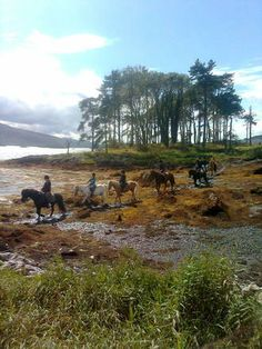 Stunning sea, Mountain & Woodland Rides County Kerry -90 min. Great Horse riding in Ireland. www.stable-mates.com