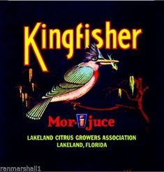 Kingfisher :: Florida Southern College Fruit and Vegetable Crate Label Collection Vintage Labels, Vintage Ads, Vintage Ephemera, Orange Crate Labels, Orlando Strong, Vegetable Crates, Kingfisher Bird, Florida Oranges, Lakeland Florida