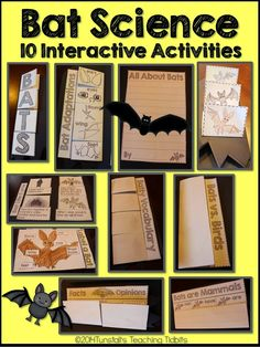 "Bats! Bats! Bats! Ten interactive bat science activities in a science foldable. Fill your science notebook or create a three dimensional multi-page bat science book full of interactive, hands on science lessons activities for kindergarten, first grade, and second grade! Included is bat life cycle, bats can, have, are chart, vocabulary, etc. Find more ""Teaching in October"" ideas at www.tunstallsteachingtidbits.com"