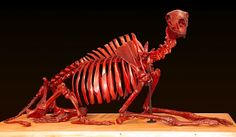"""Dressed in a white lab coat, Michael Bahl bills his work as """"post-osteological interpretation."""" Basically, he's built both skeletal monsters, and an ostensibly real research history to go with them. White Lab Coat, Postmodern Art, Skull And Bones, Postmodernism, 3 D, Lion Sculpture, Post Modern, Skeleton, Monsters"""
