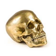 """Diesel Living with Seletti Wunderkammer """"Culture Skulture"""" Human Skull. A collectable that tells it's own unique story"""