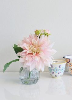 Simple Flowers, Colorful Flowers, Alien Concept, Floral, Cheer Up, Pink Silk, Pastel Pink, Flower Decorations, Decorating Your Home
