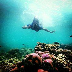#sea #beauty #blue #snorkel #indonesia
