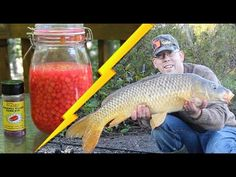 If you want know more about how to catch carp try this awesome carp bait recipe for making your own cured corn. Cured corn is the one of the best carp baits. Carp Fishing Rigs, Bass Fishing Tips, Fishing Videos, Fishing Guide, Best Fishing, Fishing Tricks, Walleye Fishing, Fishing Knots, Ice Fishing