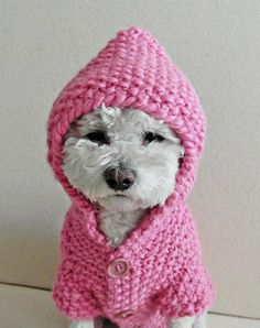 Winter DOG CLOTHING Dog Pink Hoodie Sweater Hand Knit Pet Clothing Small Dog Clothes Front Buttons Handmade Winter Dog Sweater by BubaDog Handknit from very soft warm yarn. 80 % polyester 20 % wool winter dog hoodie sweater with button opening down the front. This puppy clothes is very soft