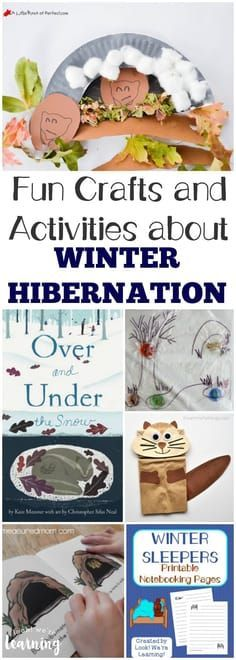 Share the fun hibernation crafts and activities in this hibernation unit study with the kids this winter! #homeschool
