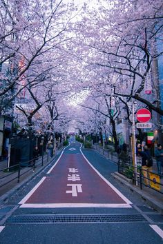 Aesthetic Japan, City Aesthetic, Travel Aesthetic, Japanese Aesthetic, Korean Aesthetic, Japon Tokyo, Shibuya Tokyo, Tokyo City, Tokyo Streets
