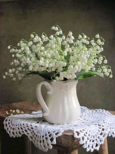 Where Inspiration Blooms (Maison de Jardin) 4 great make ahead recipes: Chicken Shrimp Salads Crab Imperial and Pound Cake Cut Flowers, Fresh Flowers, Spring Flowers, White Flowers, Beautiful Flowers, Exotic Flowers, Tropical Flowers, My Flower, Flower Art