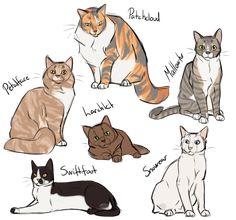 How to cat again 2 by AnnMY.deviantart.com on @DeviantArt