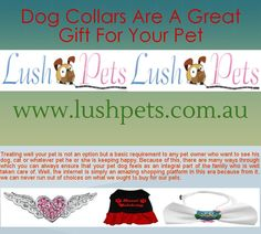 Buy Dog Collars Online in Australia - Lush Pets offers online sports apparel for pets in very reasonable rates for pet lovers. We deliver our services in Sunshine Coast, Australia with give you the highest quality products for pet/animals. If you want to purchase pet collars online visit at http://www.lushpets.com.au/dog-collars