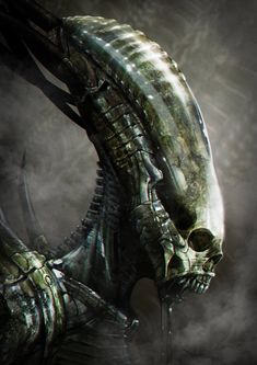 New Alien: Covenant Xenomorph head design revealed? (Updated & Clarified)