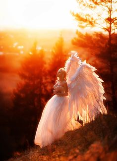 Have yourself a merry christmas with angel visitation! Photo by Maria Lipina. Angel Images, Angel Pictures, Angels Among Us, Angels And Demons, Images Lindas, I Believe In Angels, Ange Demon, Foto Art, Angel Art