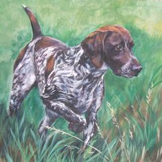 German Shorthaired pointer gsp art CANVAS print of by TheDogLover
