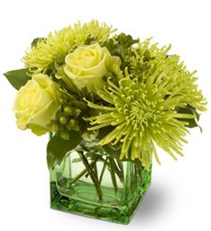 Google Image Result for http://www.academy-florists.com/images/shop/thumbnails%255Cgreen_roses_green_spider_chrysanthemums-get_well_flowers.jpg