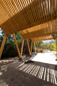 Gallery of Continuity of Structure Defines this Timber Canopy in Chile - 11