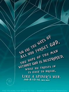 Job 8:13-14 Follow us at http://gplus.to/iBibleverses