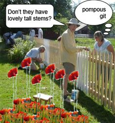 Tall poppy syndrome, Australian people hate people who show off/ boast about anything. They consider themselves to be egalitarian