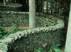 Grizedale Forest sculpture trail. This is, 'Taking A Wall For A Walk!' by Andy Goldsworthy