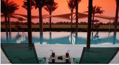 Dessert Palm infinity pool in Dubai Dubai Design Week, Dubai Hotel, Dubai Resorts, Luxury Resorts, Palm Resort, Dubai Shopping, Green Landscape, Desert Landscape, High Rise Building