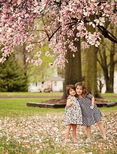 spring picture