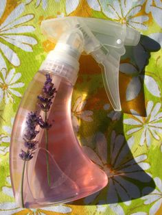 Rather than reapplying that stuff when the first batch loses potency, we mist the witch-baby with this homemade lavender and lemon infusion so she can be flea-free until the next summer.