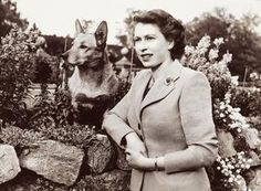 Queen Elizabeth II with her corgi Susan. Studio Lisa, 1952.