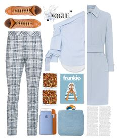"""Winter Blues"" by emcf3548 ❤ liked on Polyvore featuring Silvia Tcherassi, Prada, Rosetta Getty and L'Autre Chose"
