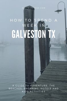 Dinning Beach Wildlife and so much more in Galveston TX. Why didn't you go there sooner? Road Trip Essentials, Road Trip Hacks, Camping Hacks, Road Trips, Cruise Vacation, Disney Vacations, Family Vacations, Disney Cruise, Kids Things To Do