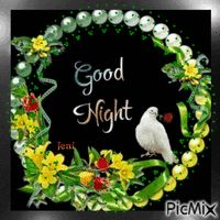 Good night Good Night Couple, Lovely Good Night, Good Night Gif, Sweet Night, Good Night Sweet Dreams, New Good Night Images, Funny Good Morning Images, Beautiful Good Night Images, Romantic Good Night Messages