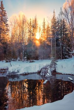 The sun sets over the snow in Fairbanks, Alaska Beautiful Sites, Beautiful World, Beautiful Places, Alaska Travel, Alaska Cruise, Alaska Trip, Nature Pictures, Travel Pictures, North To Alaska