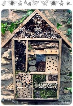 Somewhere for bees and lady bugs to make their home