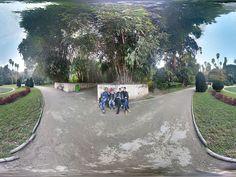 Le Jardin d'essai du Hamma à Alger, De la rue Mohamed Belouizdad à la rue Hassiba Ben Bouali, sur une superficie de 58 hectares (38 hectares de jardin et 20 hectares d'arboretum)...