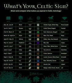 Celtic Symbol Signs And Meaning - Celtic Symbols and Irish Astrology. Celtic Astrology, Astrology Signs, Astrology Chart, Horoscope Signs, Astrology Zodiac, Celtic Signs, Celtic Zodiac Signs, Zodiac Signs Symbols, Zodiac Sign Tattoos