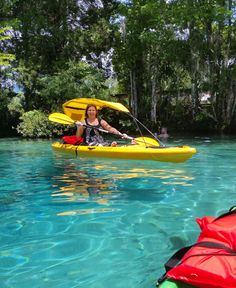Three Sister Springs in Crystal River, Fl! Enjoying the beautiful blue water and shade from the sun!