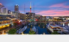 IRONMAN 70.3 Auckland Auckland, New Zealand  Swim in the Viaduct Harbour, then enjoy a stunning ride over the iconic Auckland Harbour Bridge and a two-lap run along the famed waterfront.