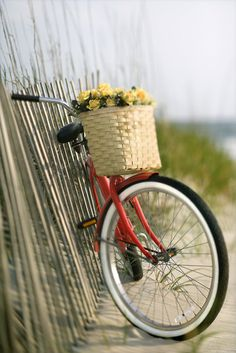 Bike riding by the beach...the best.