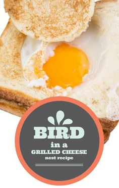 Portlandia's Fred Armisen and Carrie Brownstein showed Rachael Ray how to make the Bird in a Grilled Cheese Nest Recipe from their Portlandia Cookbook. http://www.recapo.com/rachael-ray-show/rachael-ray-recipes/rachael-ray-portlandia-cookbook-bird-grilled-cheese-nest-recipe/